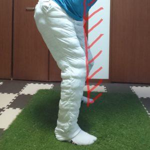 バックスイングの股関節の動き(後方から)