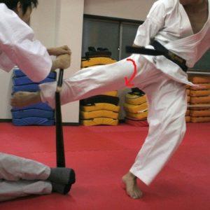 空手の股関節の動き(蹴り)