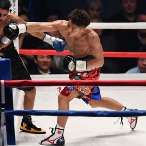 ボクシングの股関節の内旋運動
