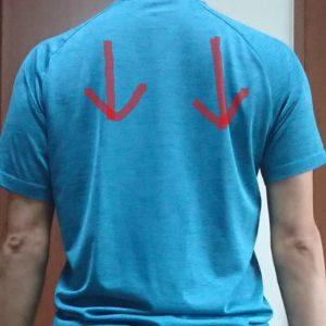 肩甲骨の下制の動き