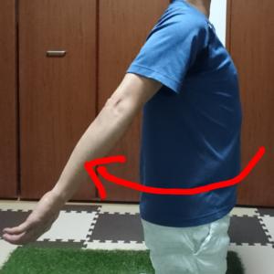 腕の後方挙上(伸展)