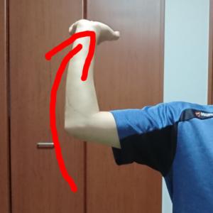 腕の外旋運動
