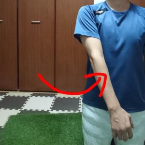 腕の内転(側方挙上)