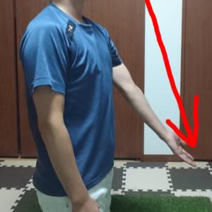 左手の前方挙上の動き