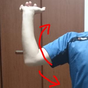 右手の外旋の動き