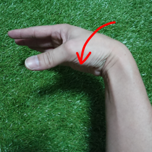 左手首の掌屈