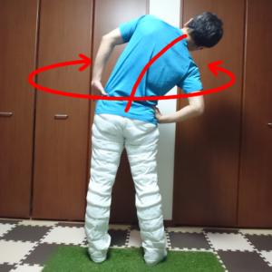 背骨の動的ストレッチ