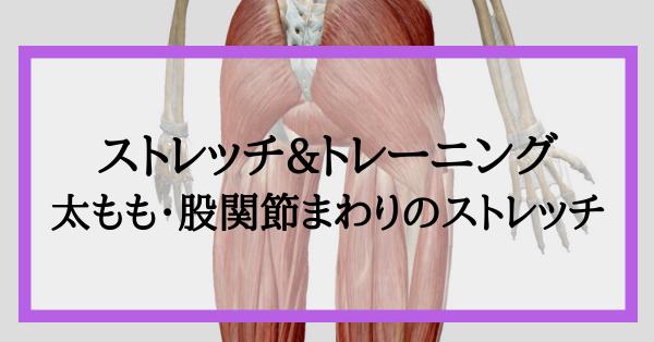 太もも・股関節周りのストレッチ